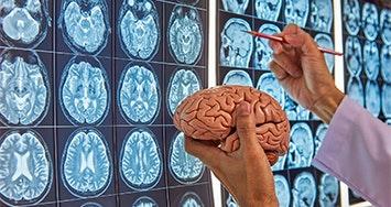 Pós-Graduação em Neurociências e Educação